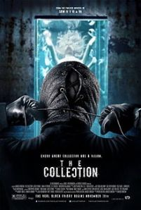 TheCollectionPoster