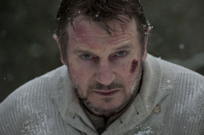 This is all I connect with now. Let's await the cold, sweet embrace of death together, Liam Neeson.