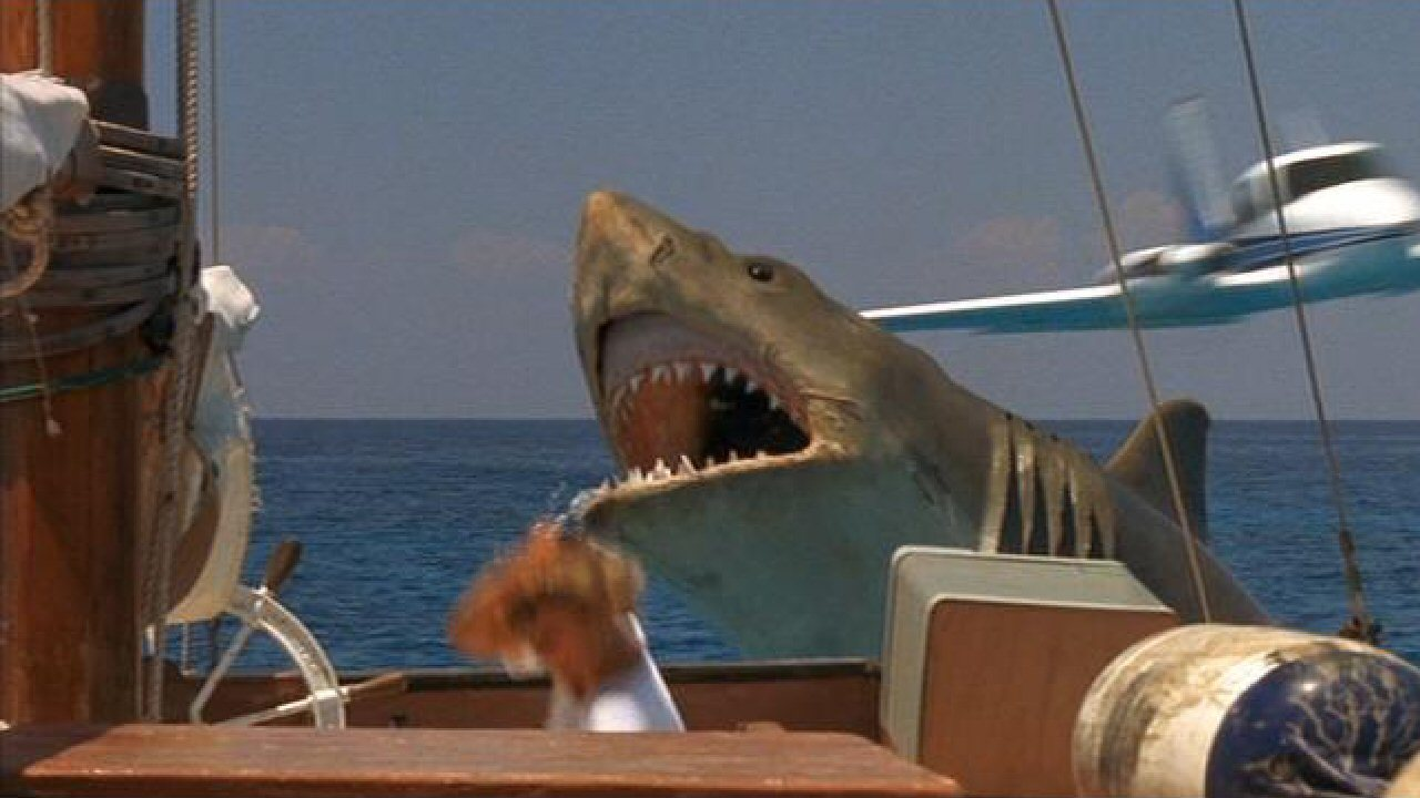 """Shark Boat Toy : Scifridays """"jaws the revenge  rooster illusion"""
