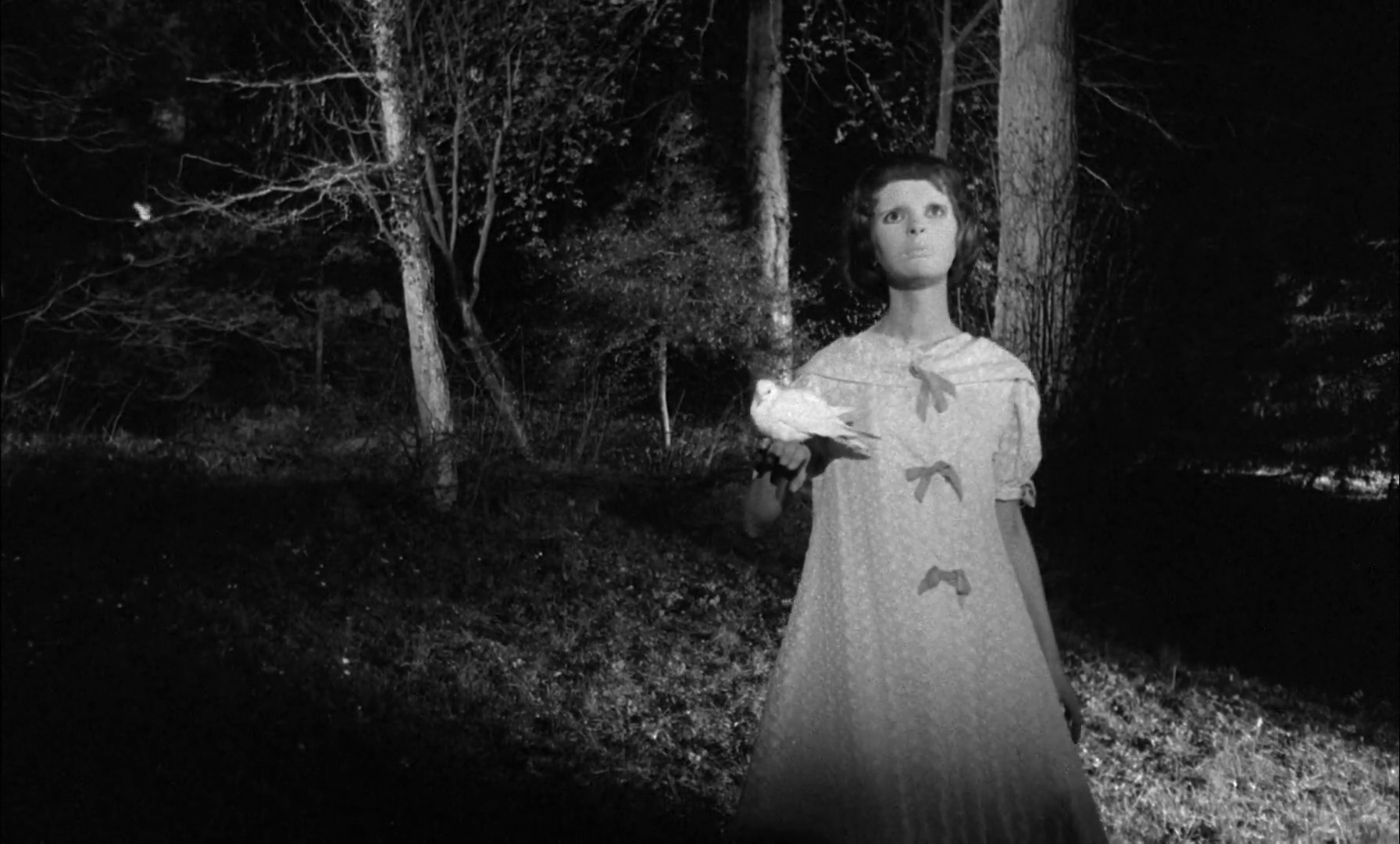 The Tuesday Zone: 'Eyes Without a Face,' a Horror Fairy