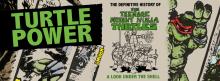 turtle-power-banner