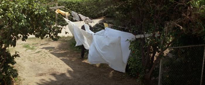 14-washing-line
